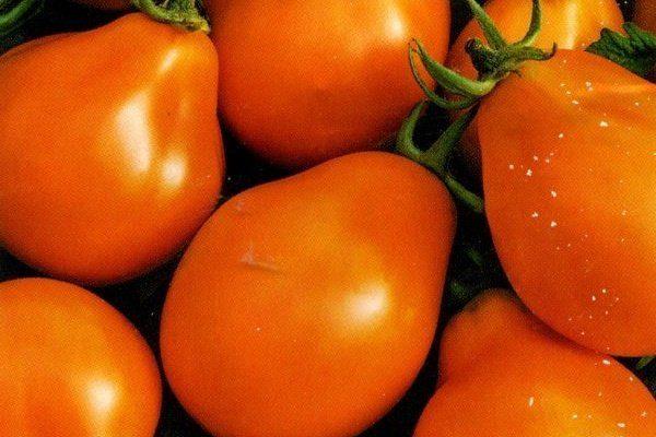 Оранжевая груша
