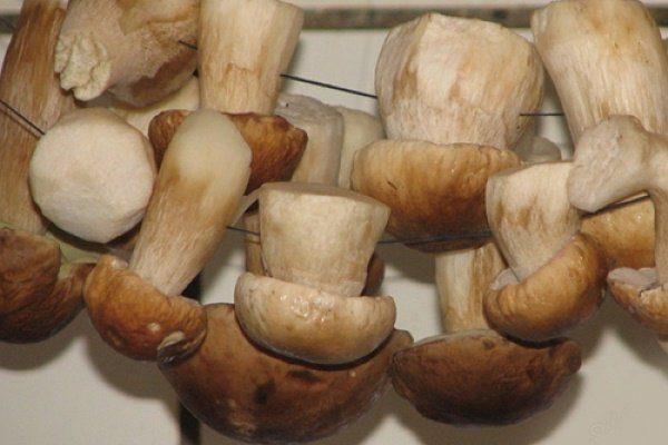 Сушеный белый гриб