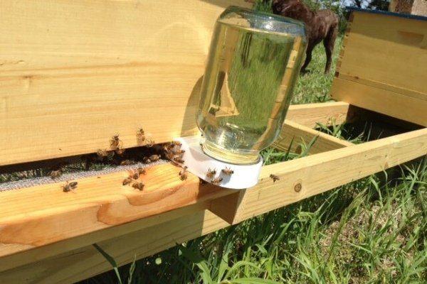 Сироп для пчел
