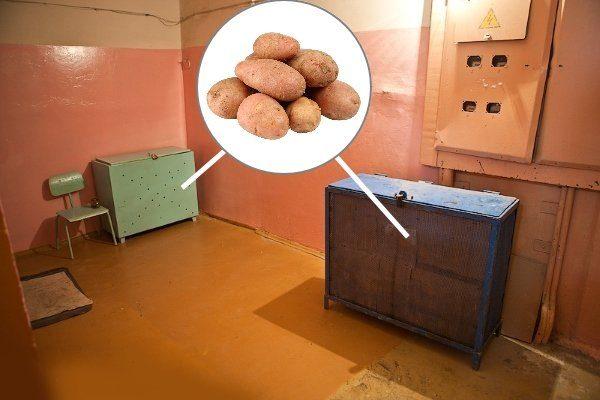 Хранение картофеля в подъезде