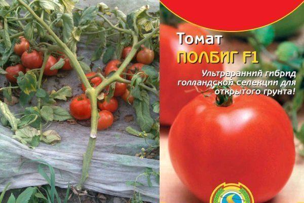 Полбиг помидоры