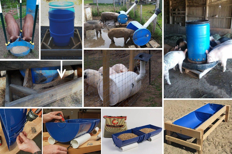 Разновидности кормушек для свиней из пластиковой бочки