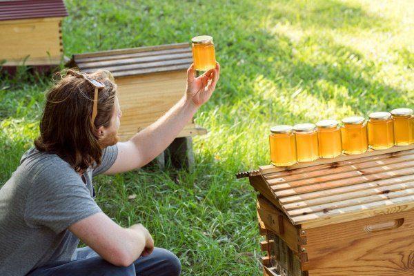 Парень держит баночку с мёдом