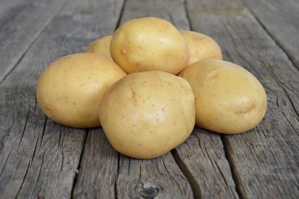 """Картофель """"Мелодия"""""""