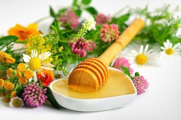 Степной мёд