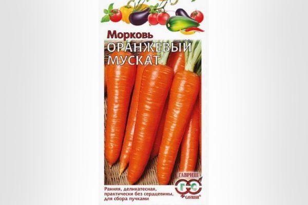Сорт Оранжевый мускат