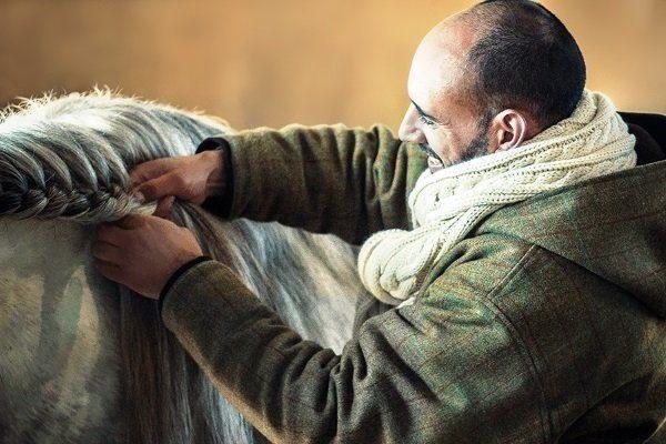 Вязать косы лошади