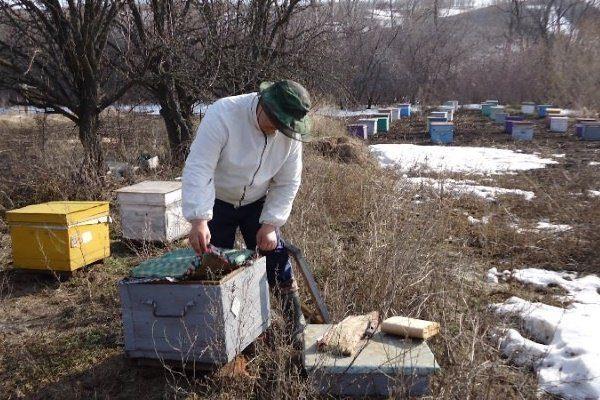 Пчеловод открывает улик