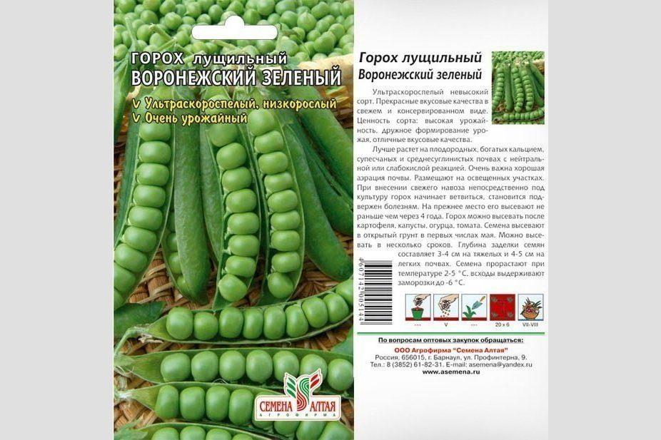 Горох Воронежский зелёный