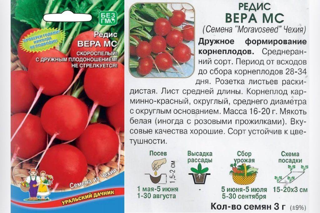 Семена Вера МС