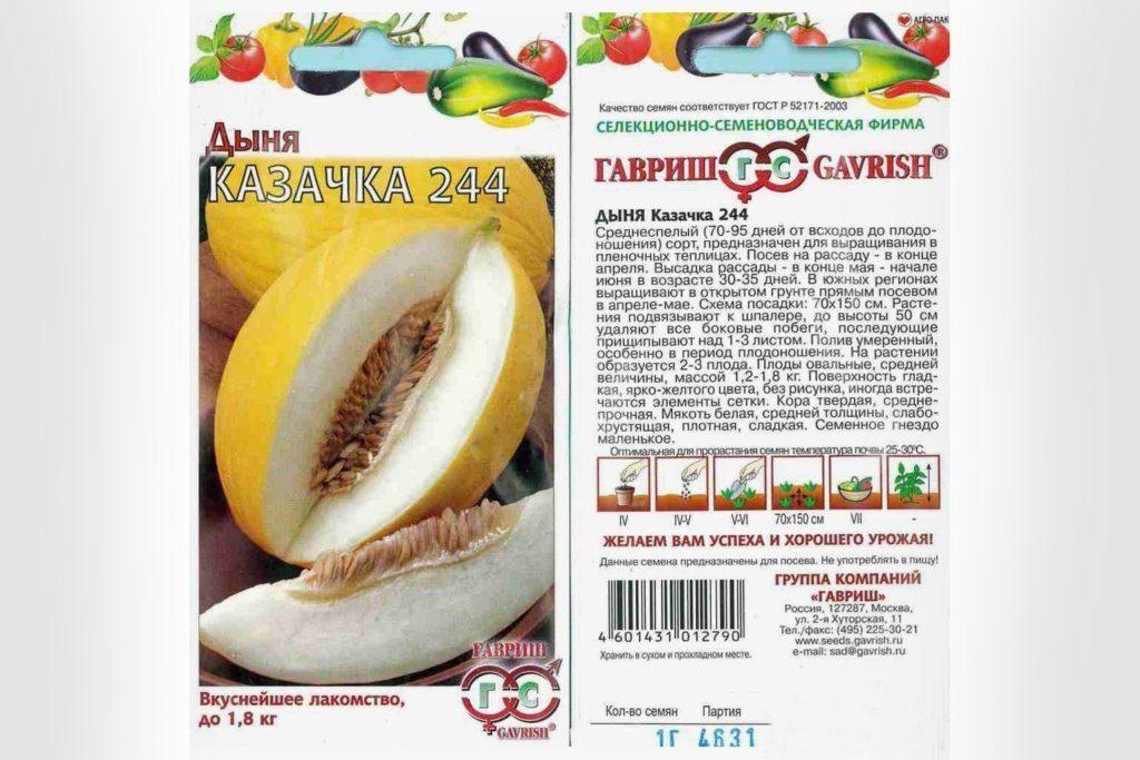 Семена Казачка 244