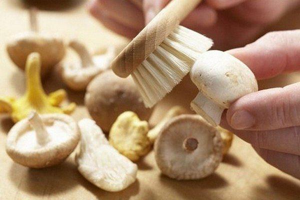 Чистка гриба щёткой