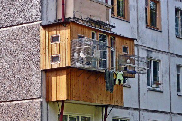 Голубятня на балконе