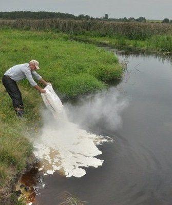 Удобрение пруда