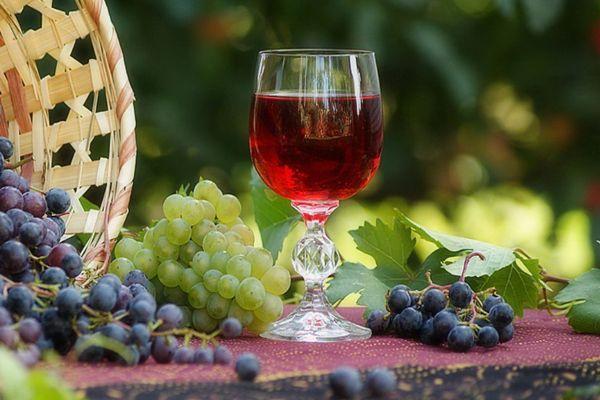 Терпкие сорта винограда