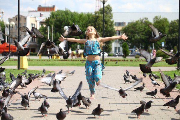 Летом голуби часто собираются рядом с людьми