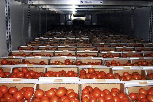 Хранение помидоров в подвале