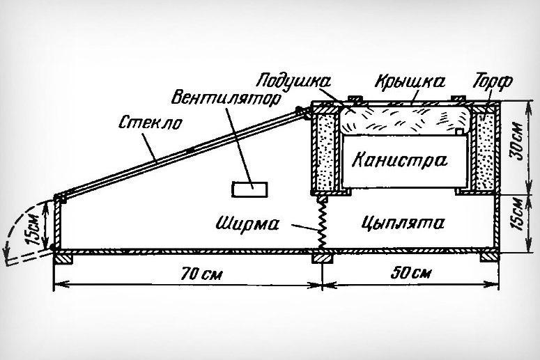 Схема брудера с канистрой горячей воды