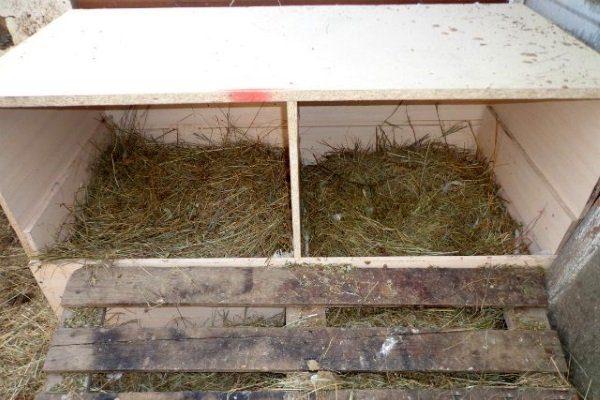 Гнезда для гусей