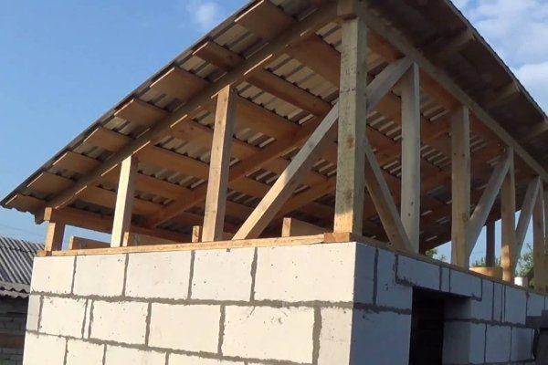 Односкатная крыша для гусятника