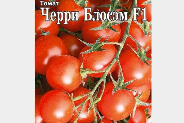 blosem-cherri-f1-tomat.jpg