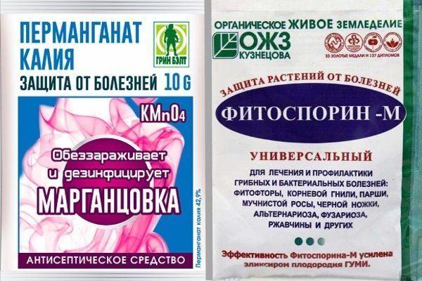Марганцовка и Фитоспорин