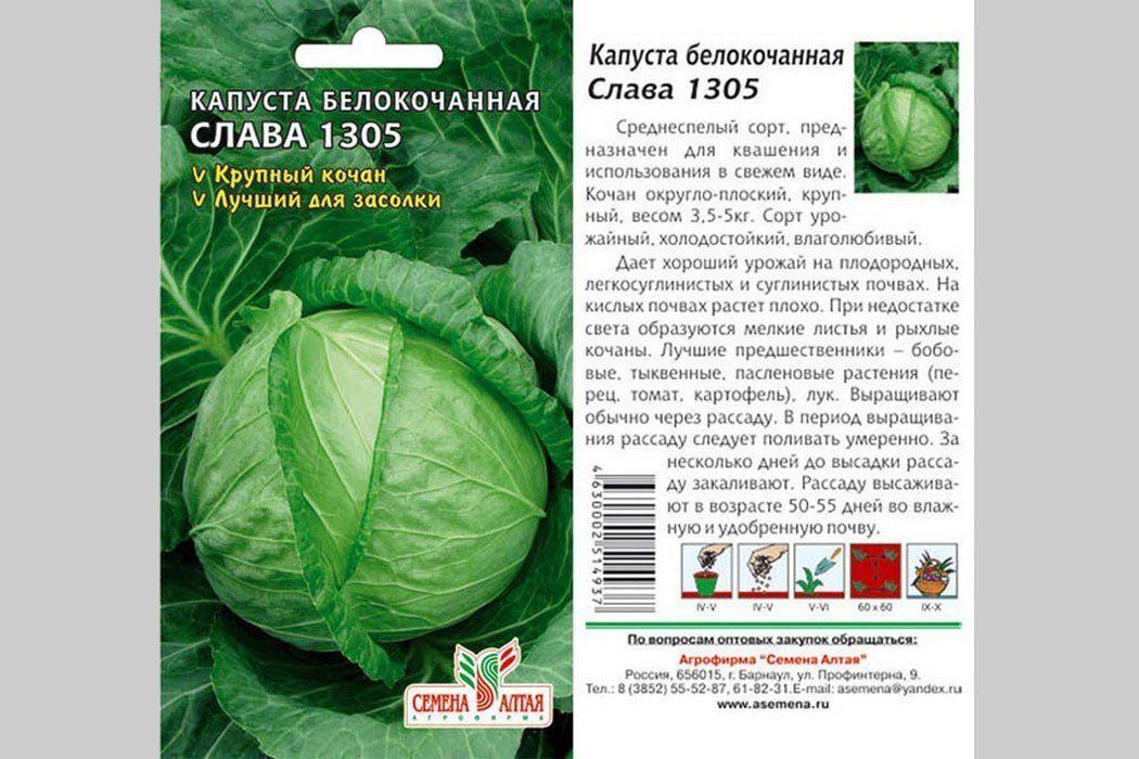 Семена сорта капусты Слава 1305