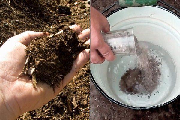Удобряем компостом и древесной золой
