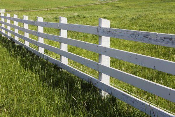 Забор загона для овец