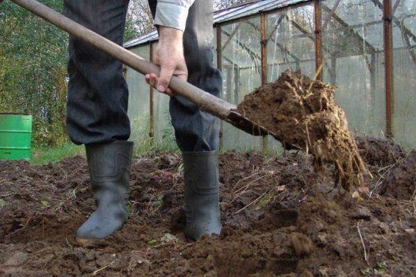 Подготовка почвы осенью