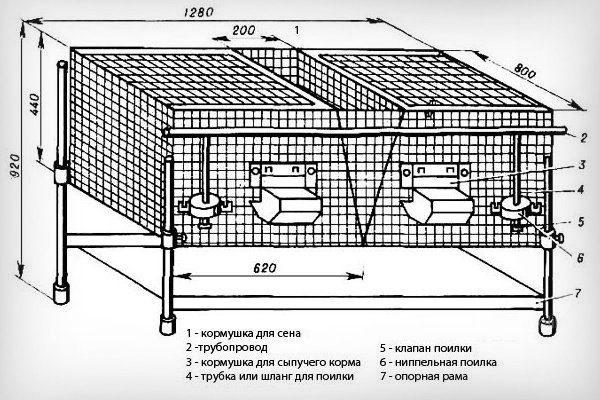Клетка из металлической сетки
