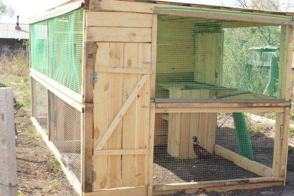 Вольер для фазанов