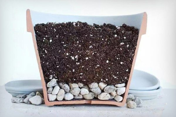 Дренаж в емкости для выращивания перца