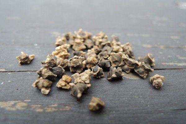 Семена свеклы