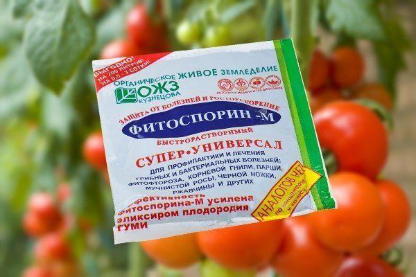 Фитоспорин-М для обработки томатов