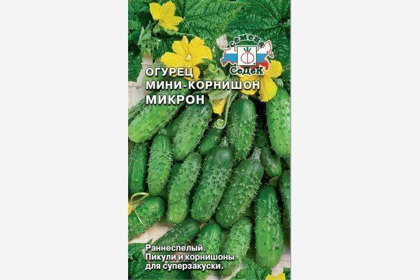 Мини-корнишон Микрон