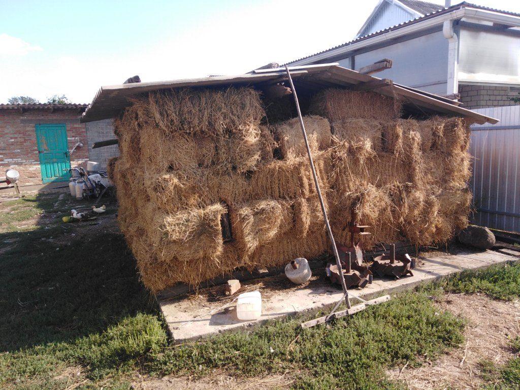 Рацион скота в летний и зимний период