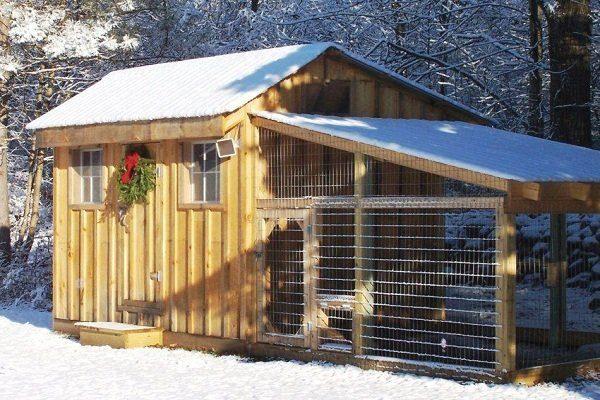 Зимний курятник на 20 кур