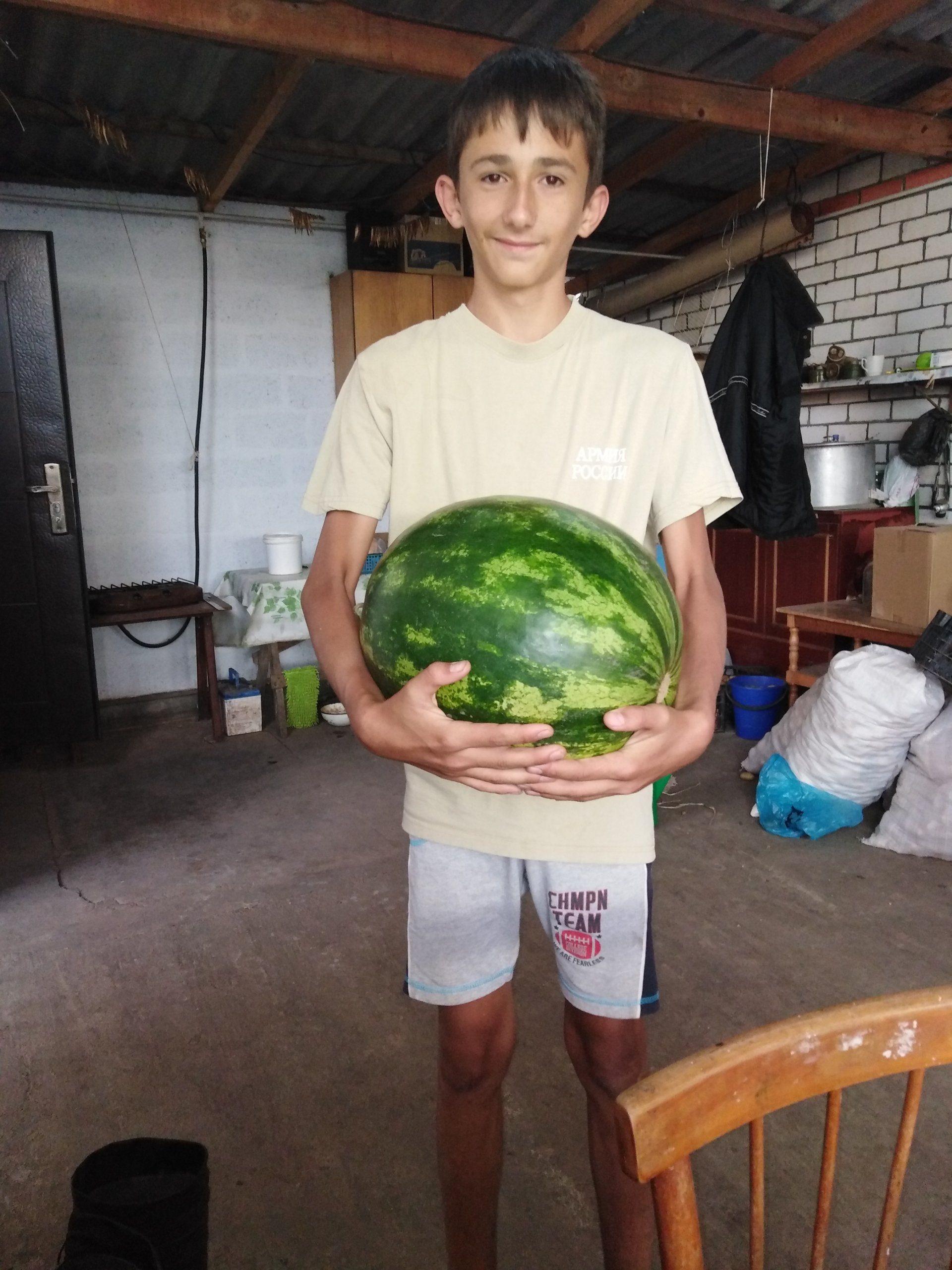Сын держит арбуз