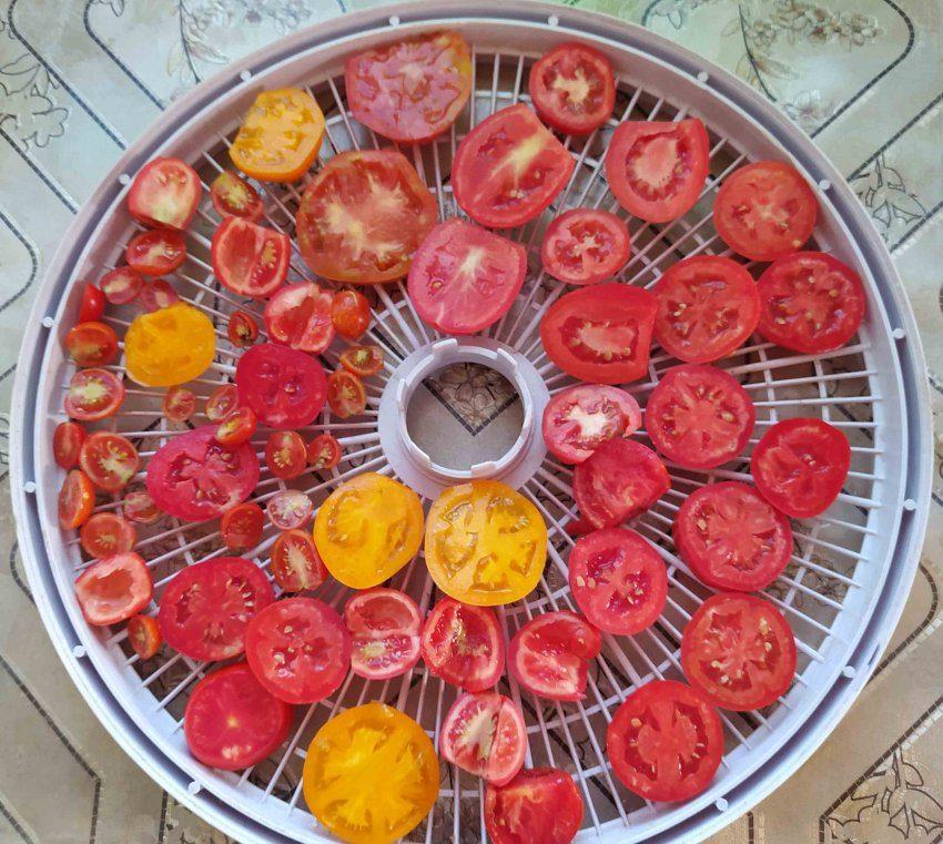 Раскладка томатов на сетке