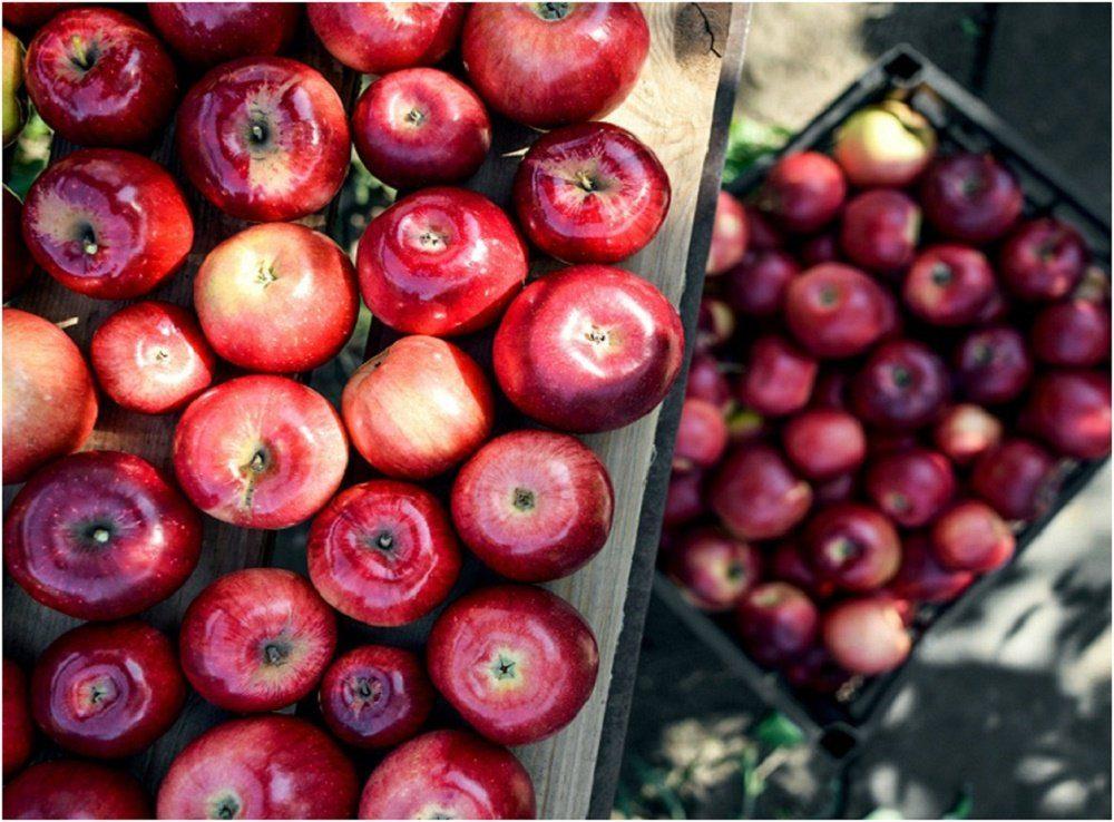 подорожание фруктов