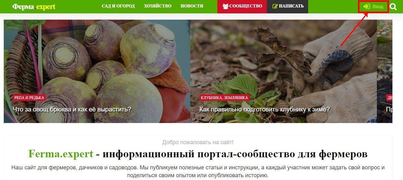 Вход на сайт Ferma.expert