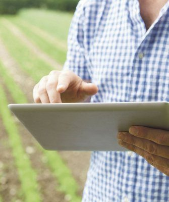 субсидии для фермеров